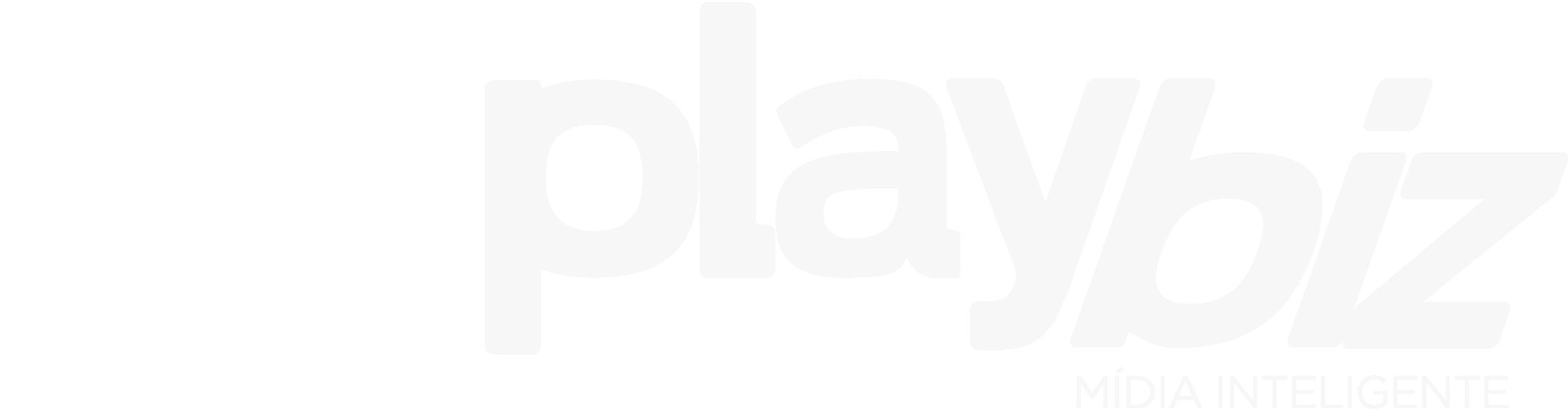 Playbiz